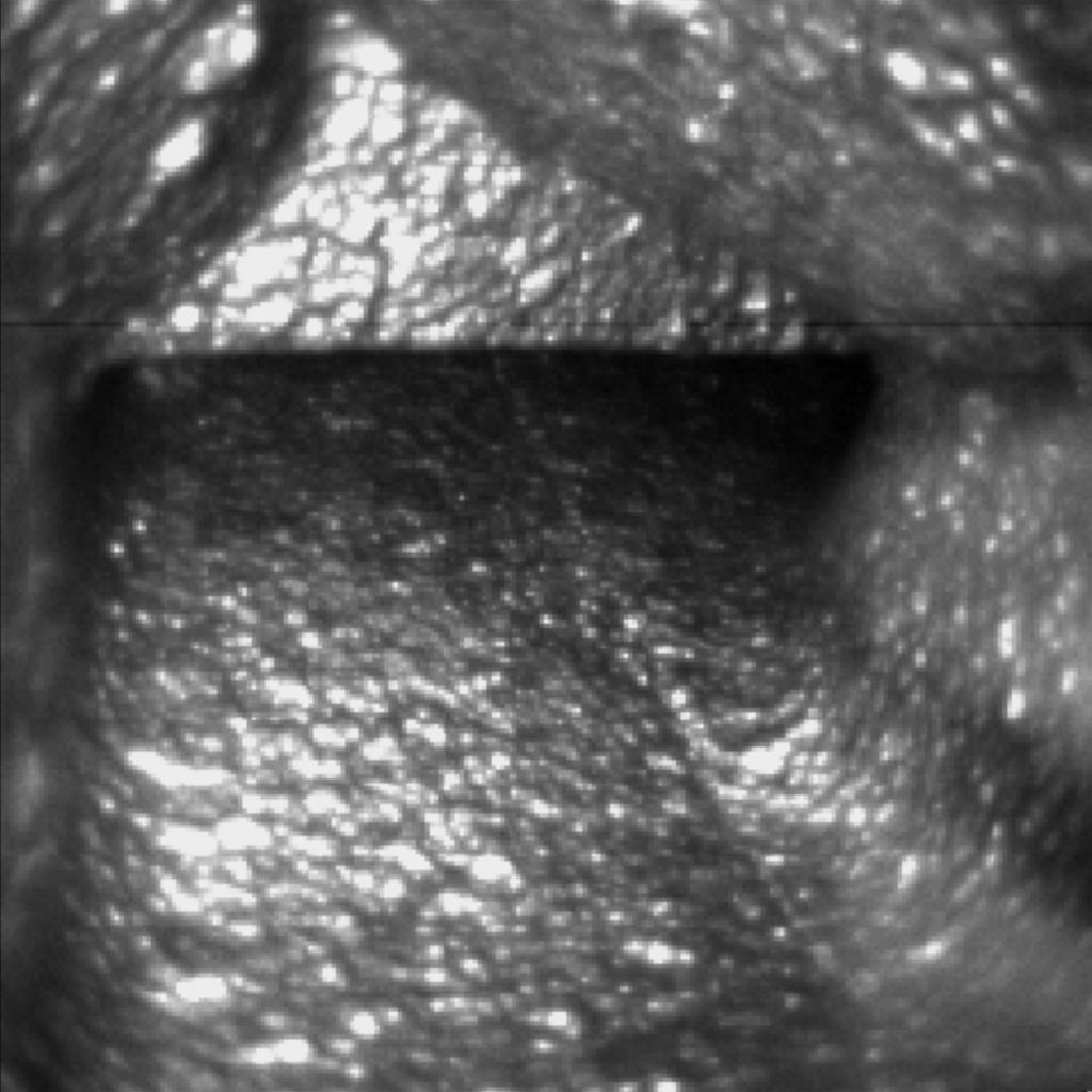 NanoCamera channel